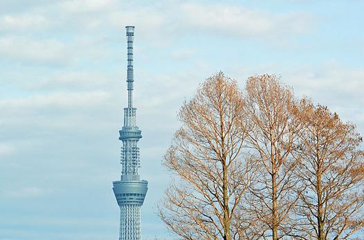 zaki-20150227-skytree.jpg
